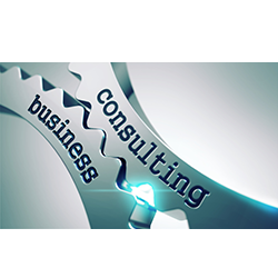 CIO Consulting Services